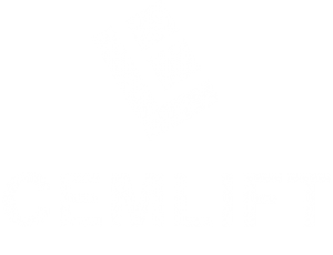 logo cemlift light